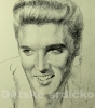 Portrét Elvise - a.m. Filip Kudrnáč
